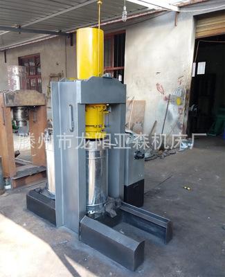 液压立式榨油机 传统工艺榨油机 豆类作物压榨机器