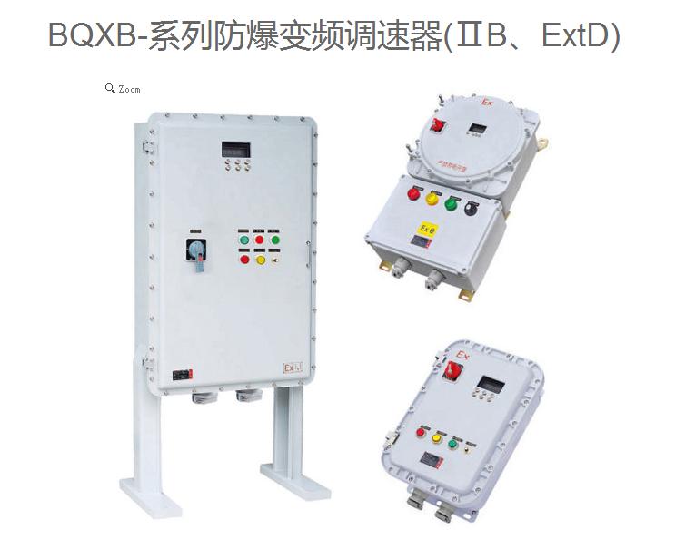 广东 厂家直销BQXB-系列防爆变频调速器 可定制规格 型号