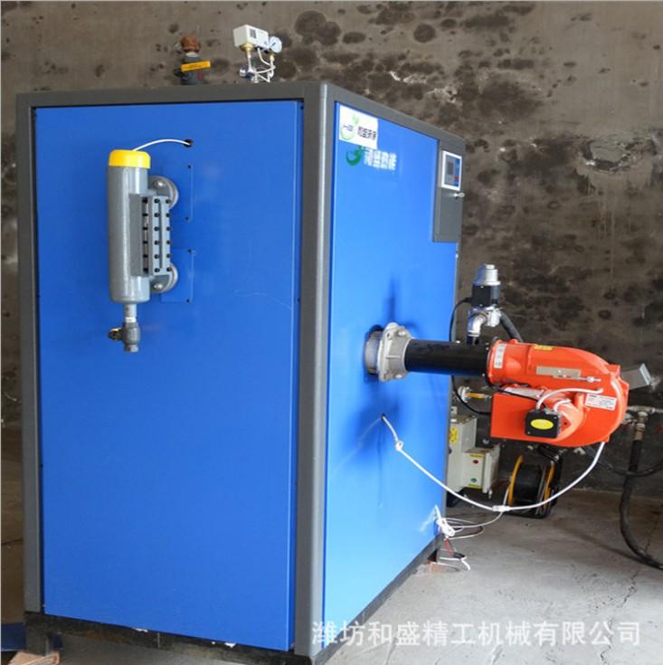 和盛燃气锅炉 蒸汽发生器 全自动立式燃气蒸汽锅炉 小型蒸汽发生器