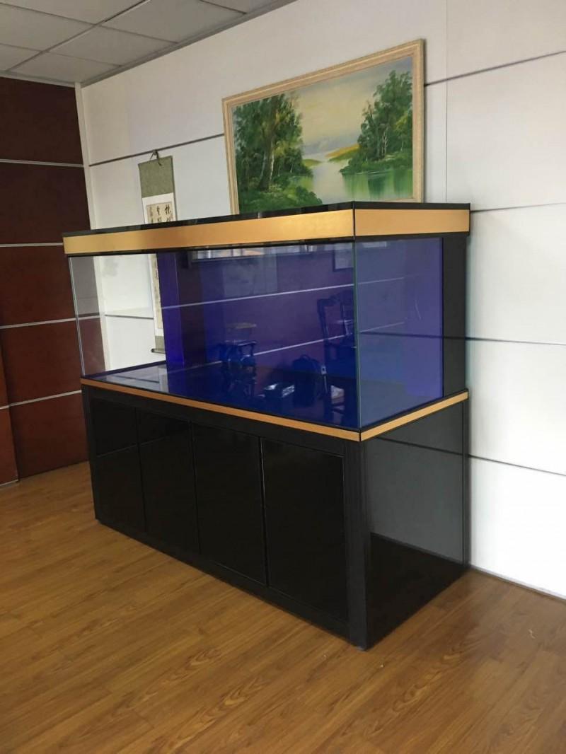 上海渤海 鱼缸 海鲜鱼缸 鱼缸定做