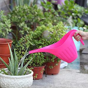 锦秀塑料浇水水壶园艺家用洒水壶室内盆栽浇水器长嘴喷水壶糖果色