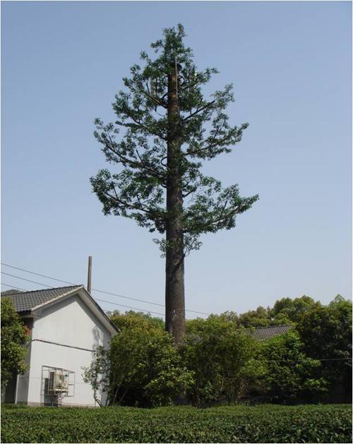 信丰公司设计制作美化仿生树塔