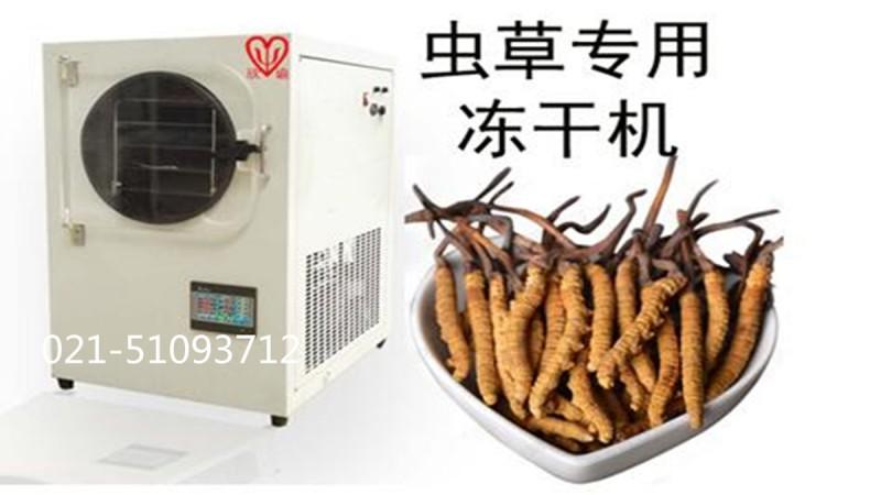 虫草冷冻干燥机保健品冻干机XY-FD-L4生物制药真空冷冻干燥机