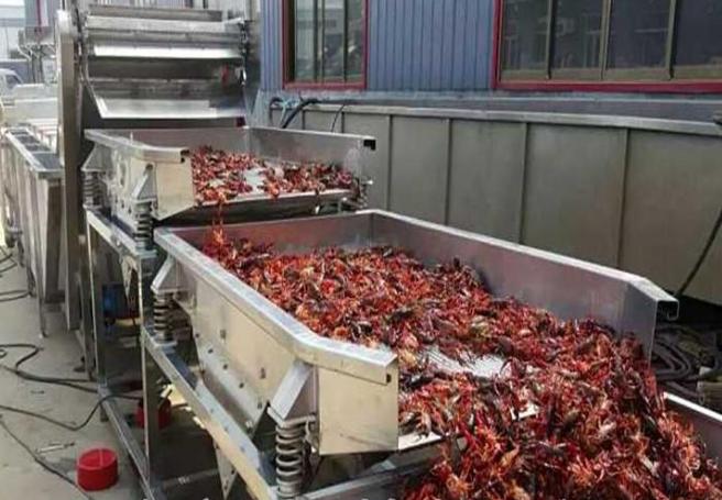 麻辣小龙虾浸泡清洗流水线低耗能高产量