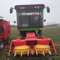 多功能自走式秸秆粉碎青贮机 农业机械青储机厂家直销