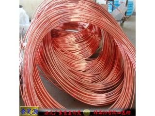 供应湖南娄底φ12铜包钢圆线好用不贵检测报告免费送送送