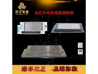 厂家直销 远红外电热高温辐射板 可定制多规格电热风幕机批发