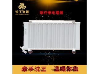 厂家直销 碳纤维电暖器 可定制多规格电热风幕机批发