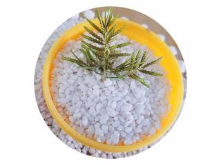 厂家直销雪花白石米 石米价格  石米厂家 水洗雪花白 精品白石米 天然鹅卵石