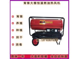 昌吉市53KW灵活经济燃油热风机DH60养殖育雏保温暖风炉